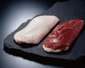 鴨ロース肉の写真